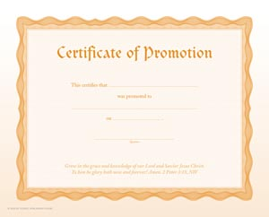 Certificate of promotion item 065346 for Promotion certificate template